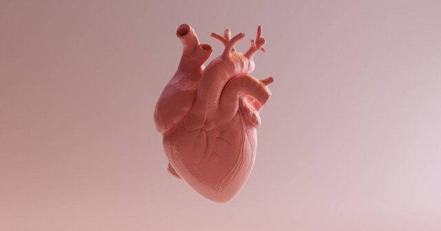 چند اصل تغذیه ای برای سلامت قلب